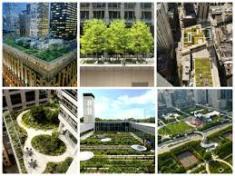 cidades verdes 4