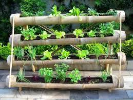 horta bambu suspenso