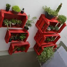 hortas caixas